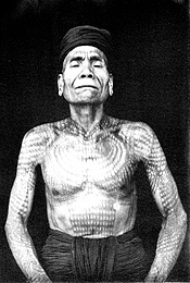 "Dayak man of the Kahajan River with a virtual ""canopy"" of the jungle tattooed on his skin, ca, 1896."