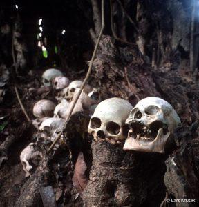 7_UpperKonyak_skulltree copy