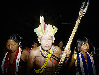 Respected village elder Tiwit leading a Jawosi dance. He carries his war equipment and sings songs that recount the deeds of his Kayabi ancestors on the battlefield. After the Kayabi moved to the Xingu Reserve in the early 1960s, Tiwit was the only Kayabi man who could identify the ipau-ip tree which is used to make tattoo pigment. When I first met Tiwit, I couldn't see his facial tattooing because it was hidden under a layer of genipapo facial paint. Upon closer inspection, the once bold lines of his cheeks and lips have faded with age.