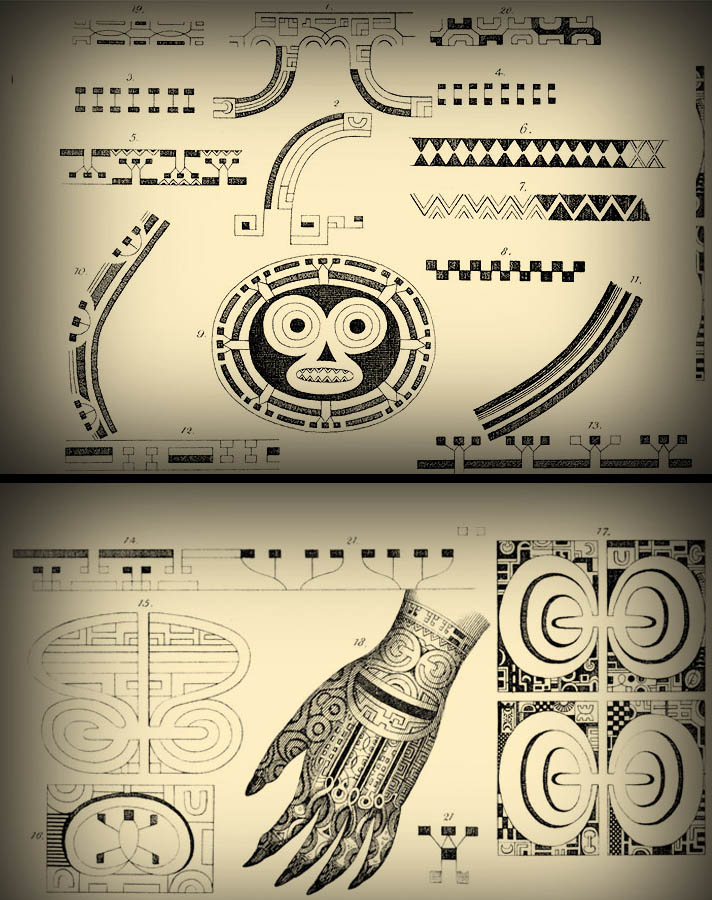 Embodied Symbols Of The South Seas Tattoo In Polynesia Lars Krutak